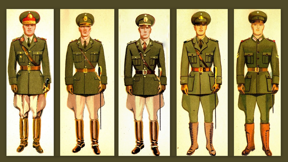 Uniforms & Field Gear - Militariarg com
